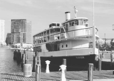 Raven in Baltimore Inner Harbor